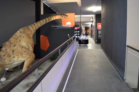 Reproduccio del titanosaure