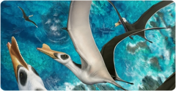 Iberodactylus, the biggest pterosaur discovered in the Iberian Peninsula