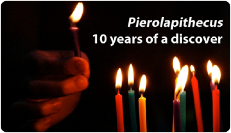 Pierolapithecus: 10 years of a discover